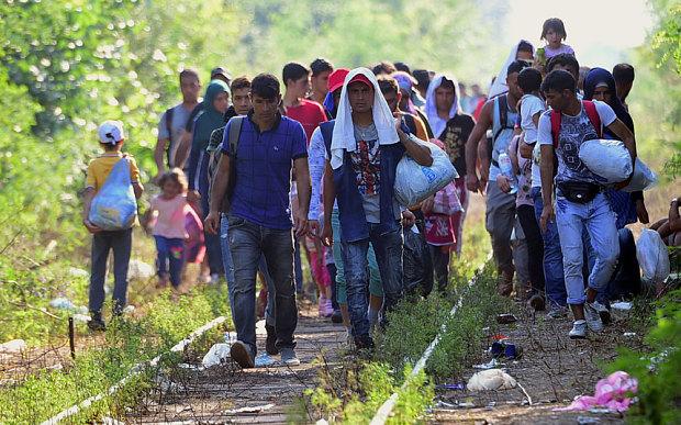 migrant_group__3421547b