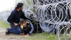 refugees 2015-3